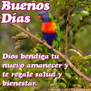 Tarjeta de Buenos Días. Dios bendiga tu nuevo amanecer