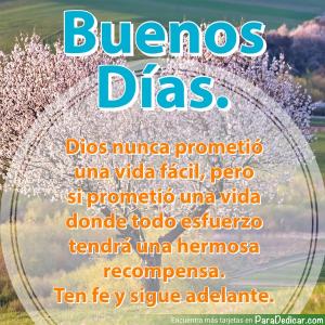 Tarjeta de Buenos Días. Dios nunca prometió una vida fácil, pero si prometió una vida donde todo esfuerzo tendrá una hermosa recompensa. Ten fe y sigue adelante.