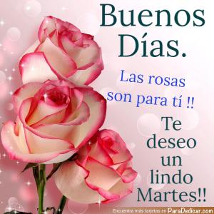 Tarjeta de Buenos Días. Las rosas son para ti !! Te deseo un lindo Martes !!