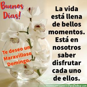 Tarjeta de Buenos Días! Te deseo un Maravilloso Domingo. La vida está llena de buenos momentos.