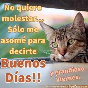 Tarjeta de Buenos Días!! y grandioso Viernes.