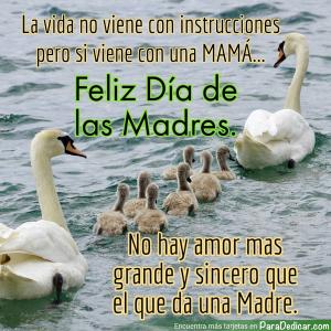 Tarjeta de Feliz Día de las Madres. No hay amor mas grande y sincero que el de una Madre.