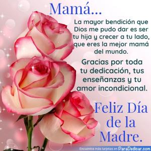 Tarjeta de Mamá... La mayor bendición que Dios me pudo dar es ser tu hija y crecer a tu lado, que eres la mejor mamá del mundo. Feliz Día de la Madre.