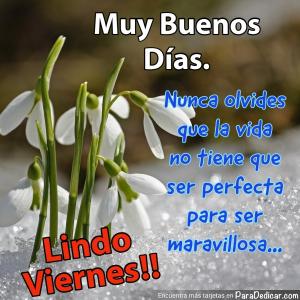 Tarjeta de Muy Buenos Días.  Nunca olvides que la vida no tiene que ser perfecta para ser maravillosa... Lindo Viernes!!